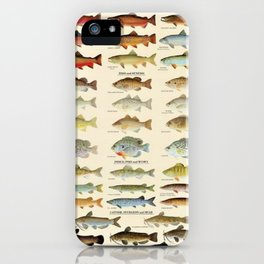 Illustrated Eastern Game Fish Identification Chart iPhone Case
