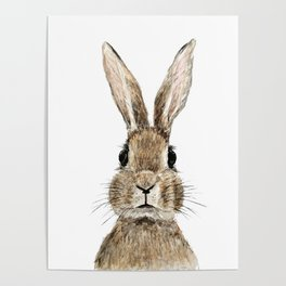 cute innocent rabbit Poster