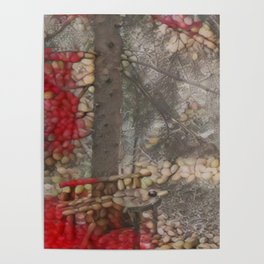 Nutty Fall Poster