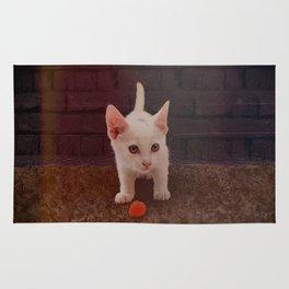 Alley Kitten Rug
