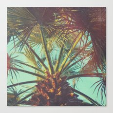Hipster Palm Canvas Print