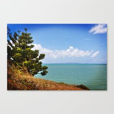 Pine Tree on a Headland with Topical Ocean Canvas Print