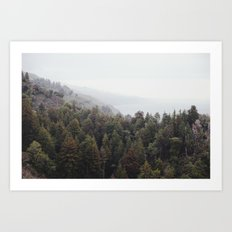 forest for all the trees Art Print