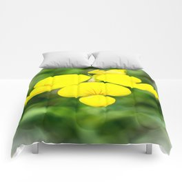 Soft Birdsfoot Trefoil Comforters