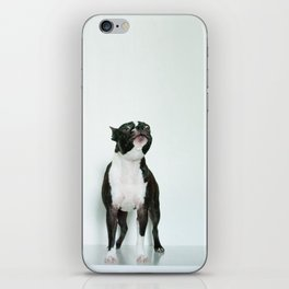 The Howler iPhone Skin