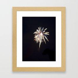 Fireworks on the Fourth Framed Art Print