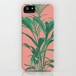 Palm Illustration - Portrait of Kentia 01 iPhone Case