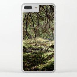 Nature, sun, water, sun Clear iPhone Case