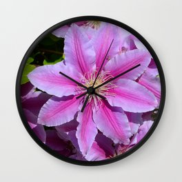 Burst of pink by Teresa Thompson Wall Clock