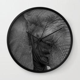 Elephant Close-Up Wall Clock
