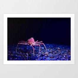 Giant crab Art Print