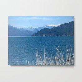 Blue Vista Metal Print