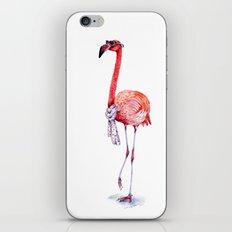 Fashionable  Pink Flamingo iPhone Skin