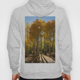 Autumn Blaze outside of Crested Butte, Colorado for #Society6 Hoody