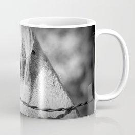 Horse's Eye: Black and White Photo Coffee Mug