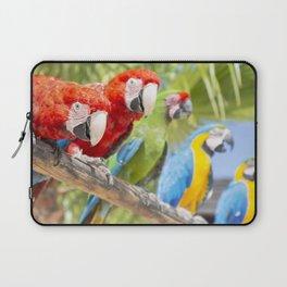 Curious macaws Laptop Sleeve
