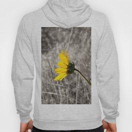 Sunflower Daydream Hoody