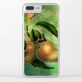 Bombay Mangos with Butterfly, Vintage Botanical Illustration Collage Art Clear iPhone Case