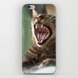 Yawning Cat iPhone Skin