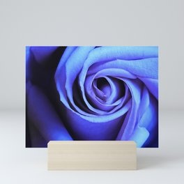 Blue Rose Close Up Mini Art Print