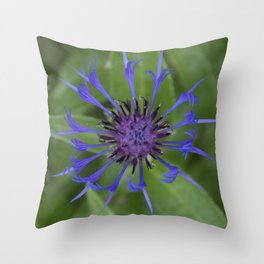 Thin blue flames in a sea of green Throw Pillow