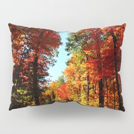 Fall Forest Road Pillow Sham