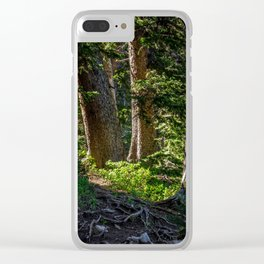 Trail, Fairy Lake, Gallatin County, MT Clear iPhone Case