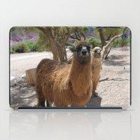 lama iPad Cases featuring Lama-liscious by Sahara Novotny