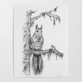 Deep in the wood (Squirrel on a branch) Poster