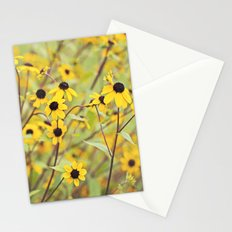 Vintage Daisies Stationery Cards