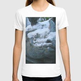 Snow On Rino T-shirt
