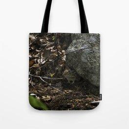 chipmunk playing hide and seek Tote Bag