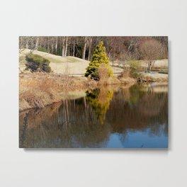 Quiet reflection Metal Print
