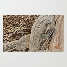 Still life in palm bark Rug