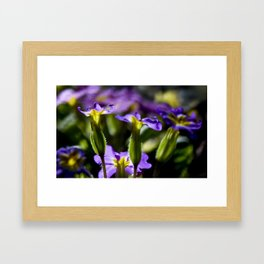 Light purple flowers Framed Art Print