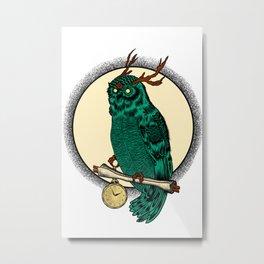 Eccentric Owl Metal Print