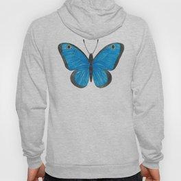 Morpho Butterfly Illustration Hoody