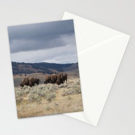 Bison in Yellowstone National Park Stationery Cards
