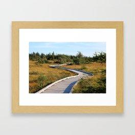 Bog Trail Framed Art Print