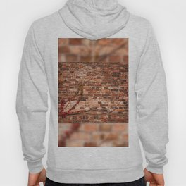 Red ivy hedge climber on wall Hoody