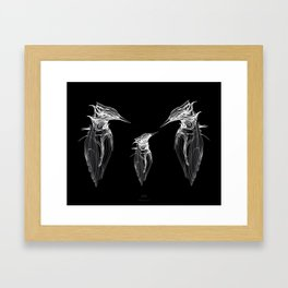 Kingfisher Family. White on black background-(Red eyes series) Framed Art Print