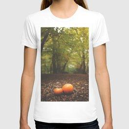 Family Pumpkin T-shirt