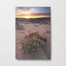 Desert Flower Sunrise Metal Print