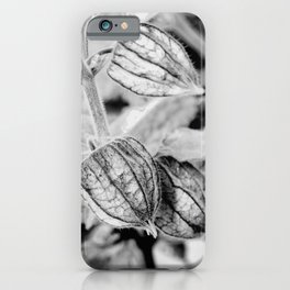 Physalis angulata iPhone Case