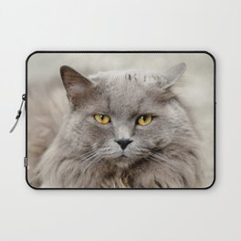 Funny Angry Cat Laptop Sleeve
