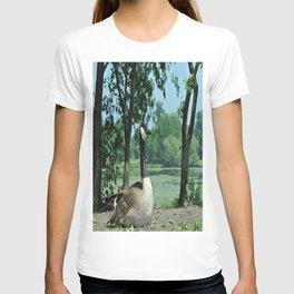 Deluxe Ducks #16 T-shirt