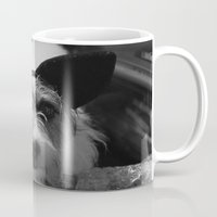 jack russell Mugs featuring Jack Russell by Arianne Kenworthy Photography