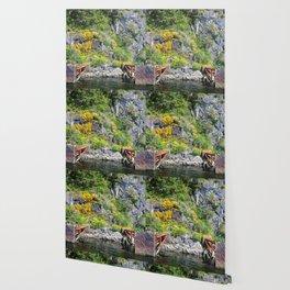 Bumper Pads Wallpaper