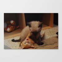 wrestling Canvas Prints featuring Wrestling kitties by SydBoom