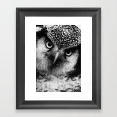 Owl series no.6 Framed Art Print